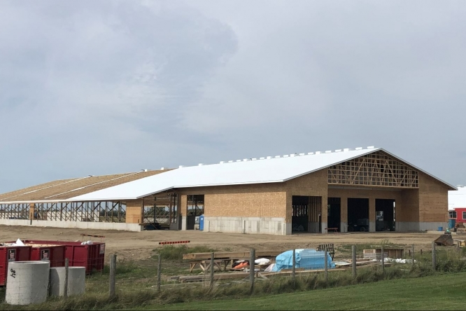 Beef barn under construction at Elora